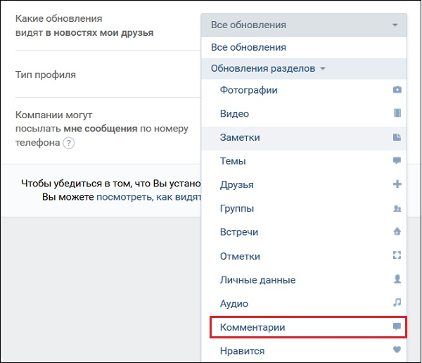 What is visible in the updates to VK friends
